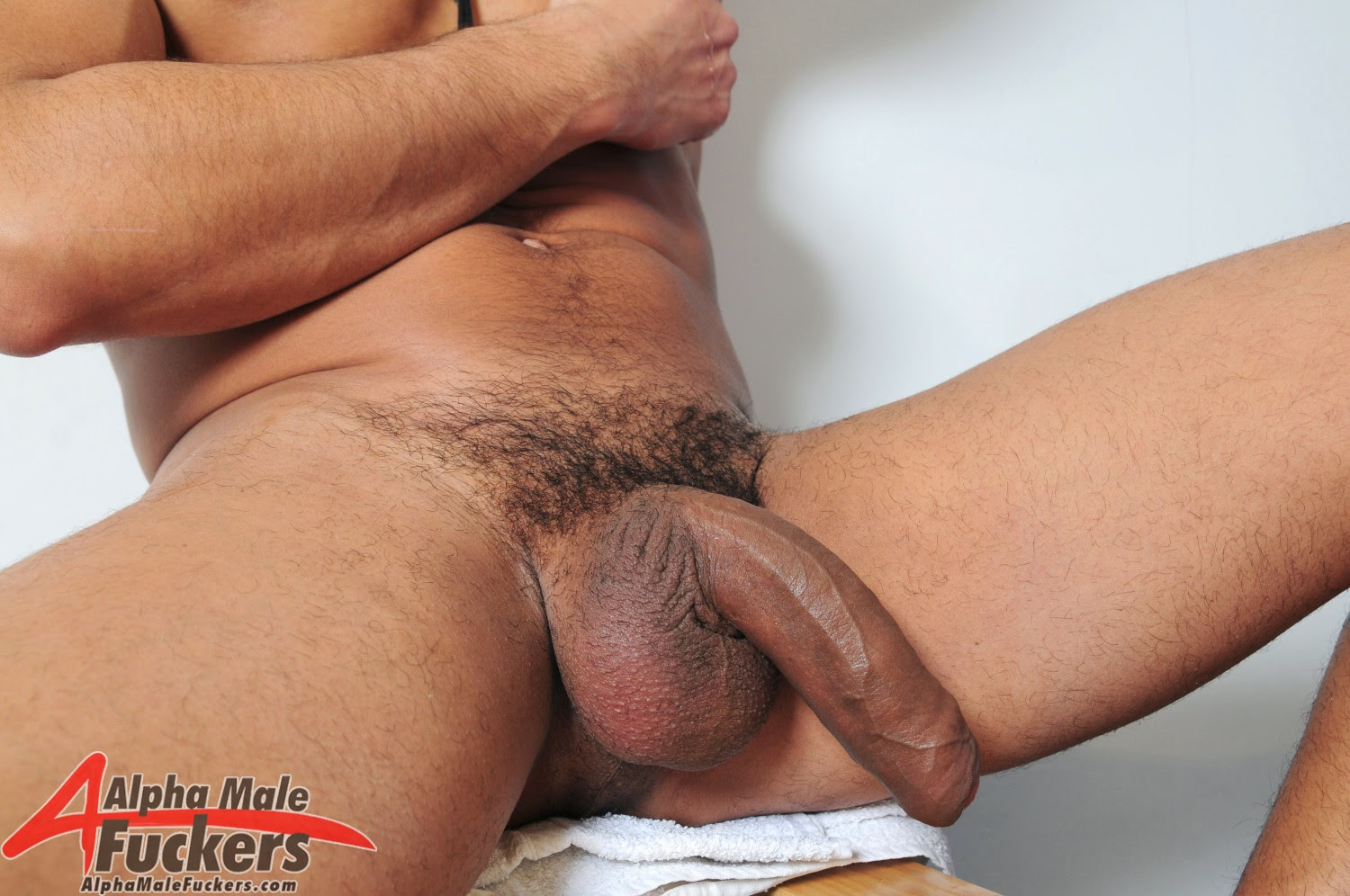 fat cock and balls № 68592