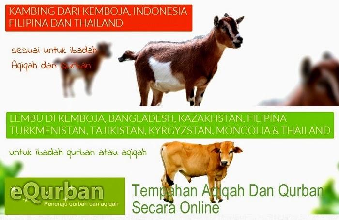 Persoalan Hukum Dan Cara Ibadah Qurban dan Aqiqah Secara Online