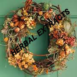 Herbal Extracts / Pure Herbs  india
