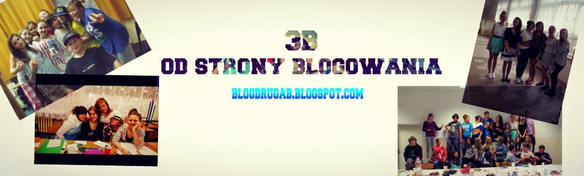 3b od strony blogowania