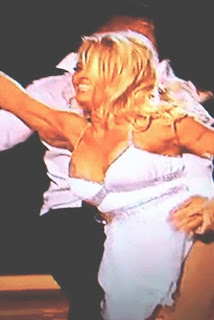 funny picture: tit nippel of pamela anderson