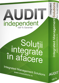 AUDIT INDEPENDENT
