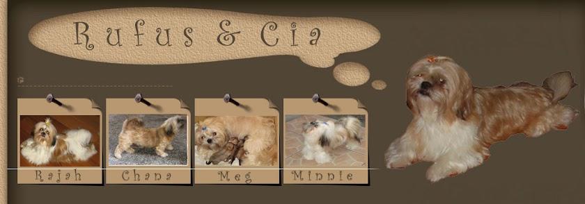 Rufus e Cia