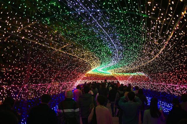 light gardens