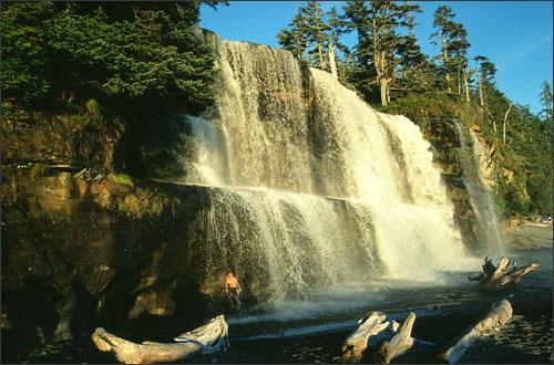 Pacific rim taman nasional