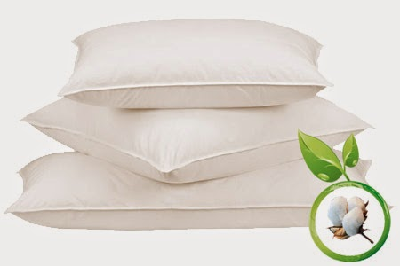 Organic Pillows Bedding