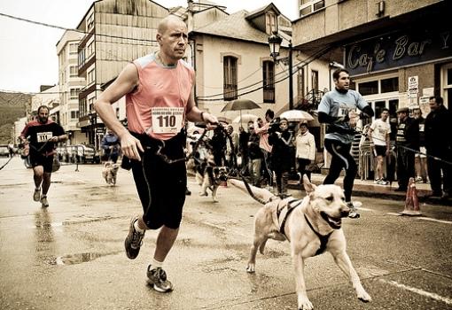 Canicross, homem e cão formam dupla na corrida