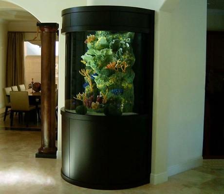 Custom aquariums ideas modern house interior for Aquarium interior decoration