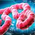 Συναγερμός στις ΗΠΑ: Ο Έμπολα έκανε την εμφάνισή του στο Τέξας