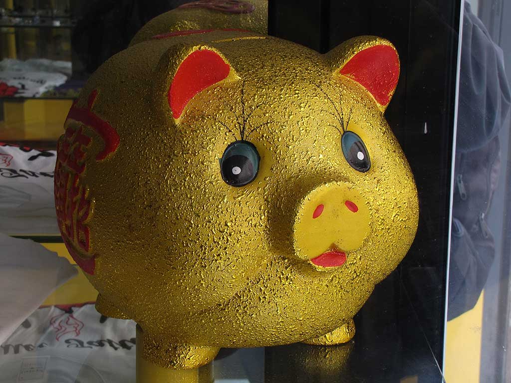 Piglet with Chinese characters in a tattoo parlor, Livorno