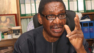 Electoral Act: Sagay carpets NASS, tells INEC what to do if lawmakers override Buhari
