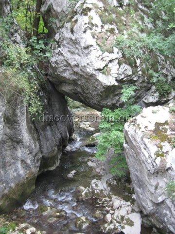 Kanjon Resave