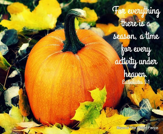 bible verse, fall, inspiring verse, God's Word, Sunday Verse, http://bec4-beyondthepicketfence.blogspot.com/2015/10/sunday-verese.html