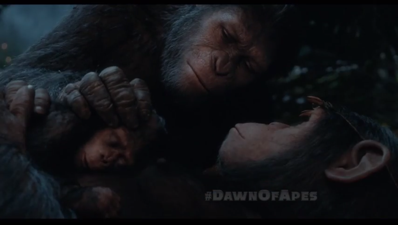 Rise Of The Planet Of The Apes Caesar And Cornelia
