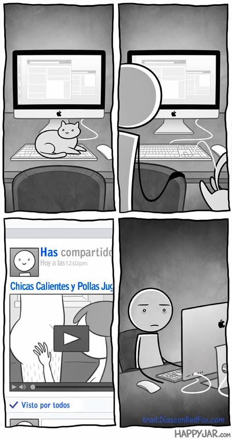 ¿Que hacen los gatos cuando les dejas solo con tu ordenador?