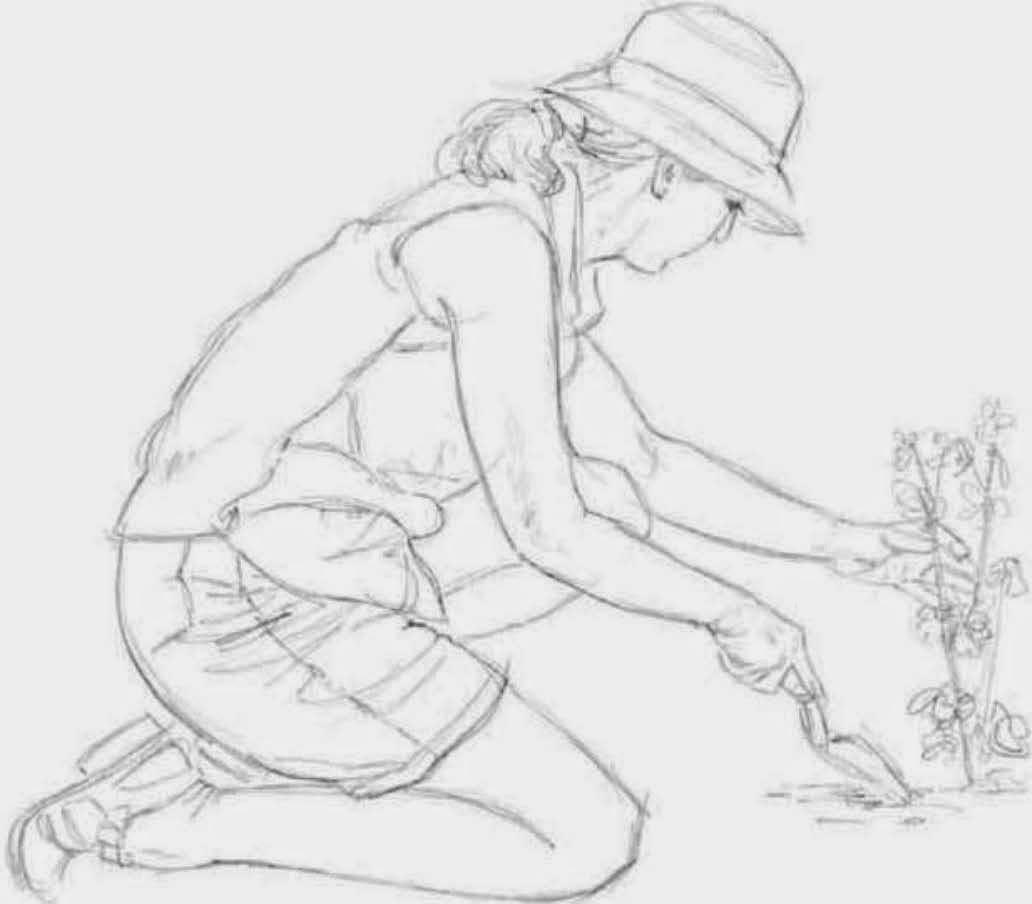 Drawings July 2014