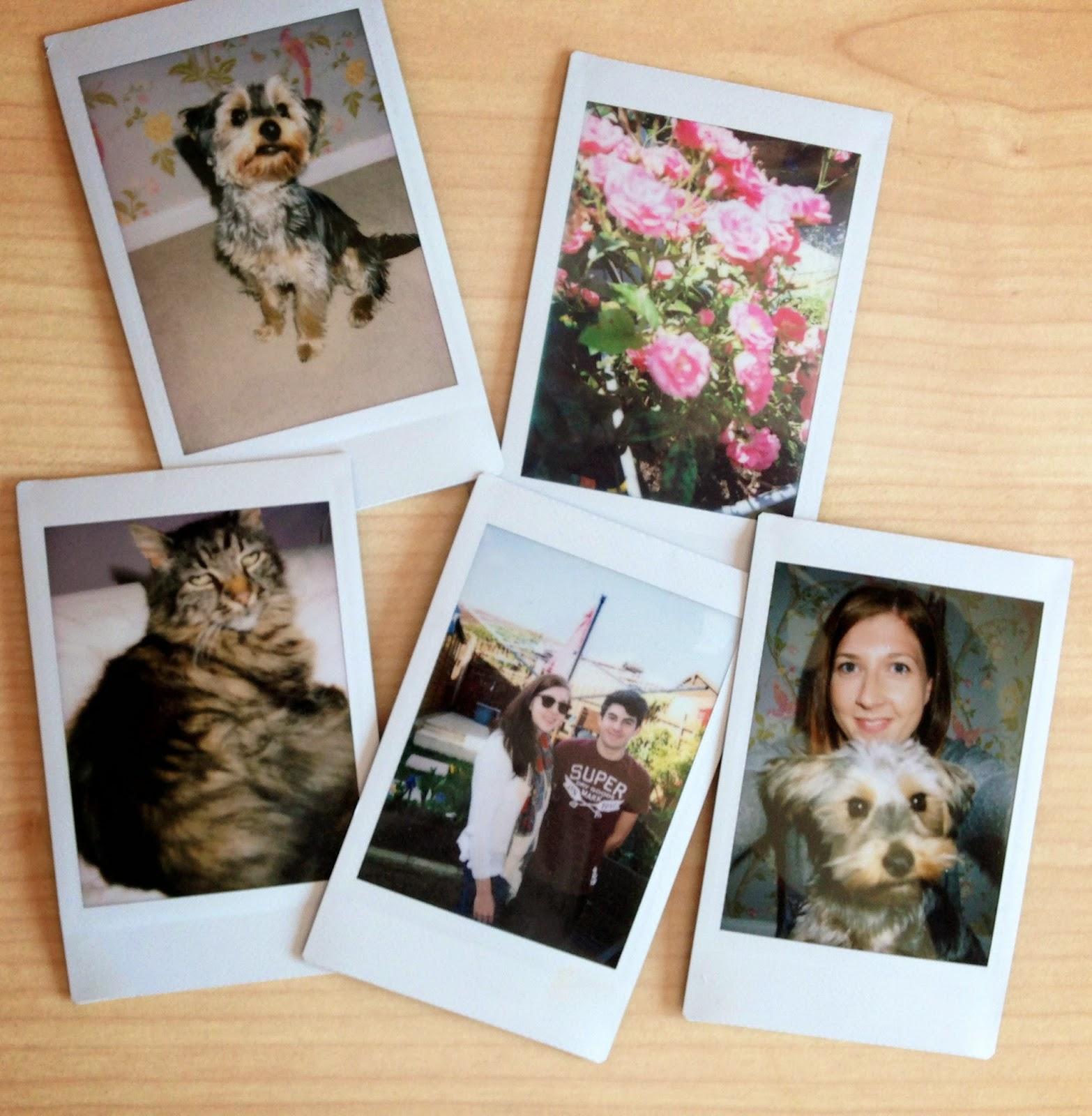 photography, instax mini, polaroid, fbloggers, fashionbloggers, lbloggers, lifestylebloggers, hobbies, fujifilm, argos, welovepolaroid