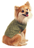 Martha Stewart dog sweater