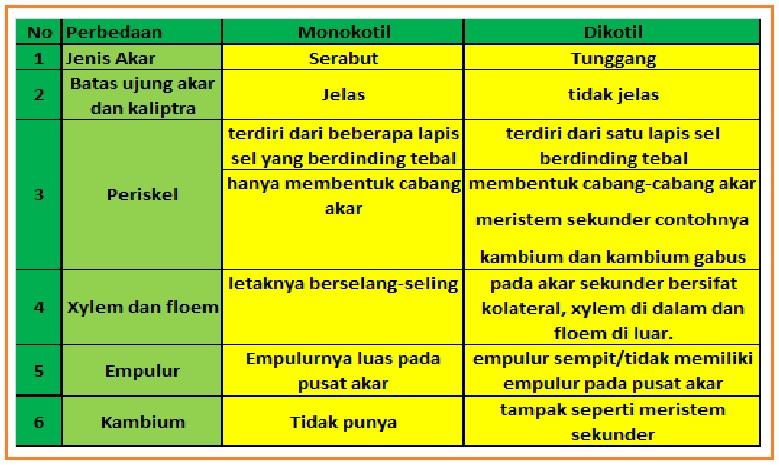 TRENDING TOPICS: MONOKOTIL - DIKOTIL