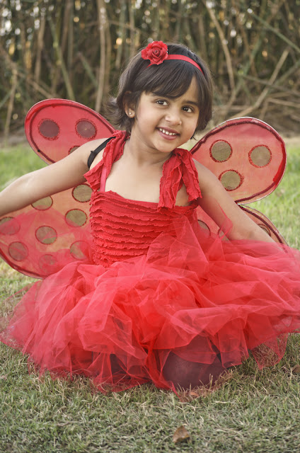 ladybug costume diy