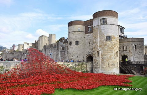The Tower of London, Poppies
