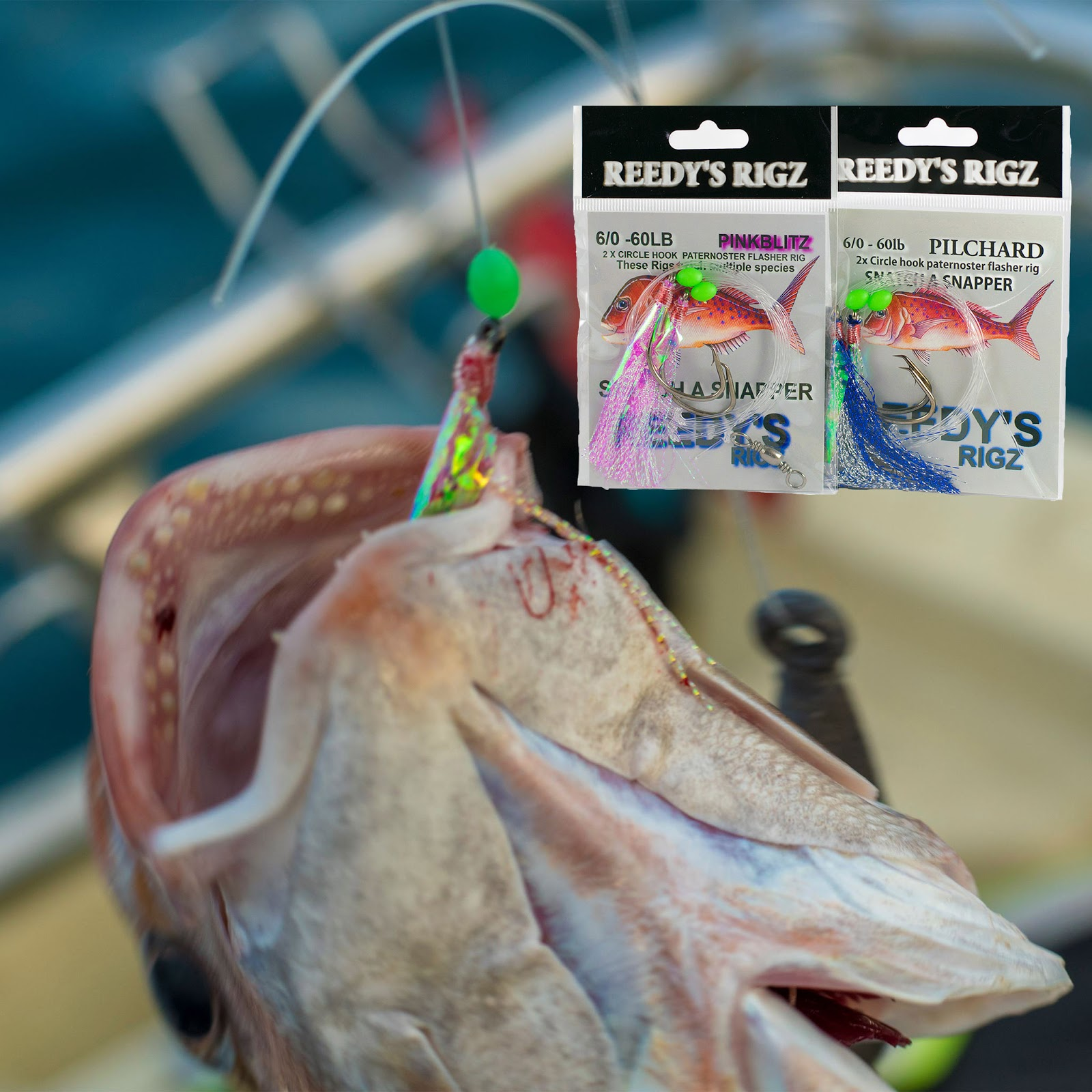 snapper rigs, flasher rigs , fishing, fishing rods, snapper rogs,shimano,bait fishing,snapper snatchers,fishing rig,4/0 hook,fishing hook,snapper hook ,