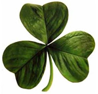 "Selling a business requires more than the ""Luck of the Irish""."