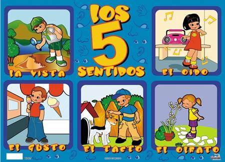 Organos delos sentidos para niños - Imagui