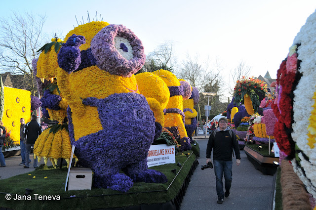 Bloemencorso 2013 Holland