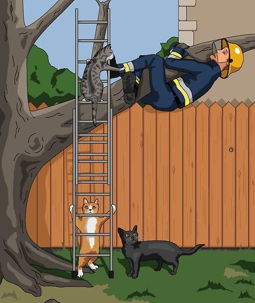 En un univrso paralelo, los gatos... te hacen esto