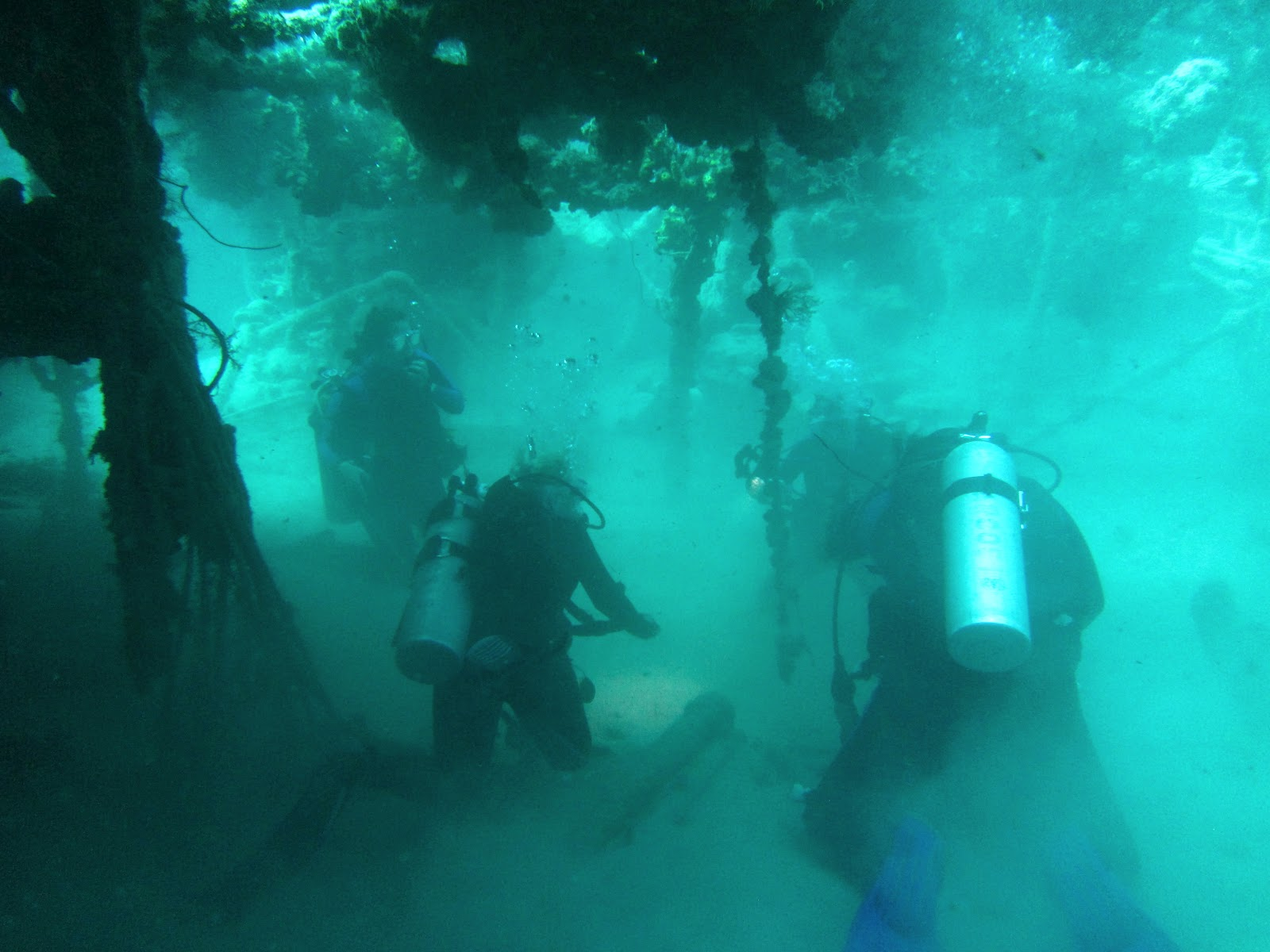 How to scuba dive florida jupiter drift got2dive our dive plan was to scuba dive into jupiters wrecks known as the west palm wreck trek one of the most popular wrecks in the trek is the mizpah an xflitez Images