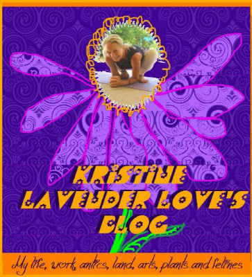 Kristine Lavender Love's Blog