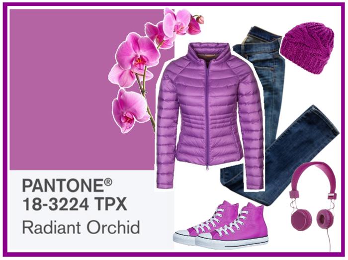 radianti orchid