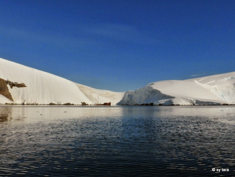 Sy tara nl het ijspaleis 21 23 februari - In het midden eiland grootte ...