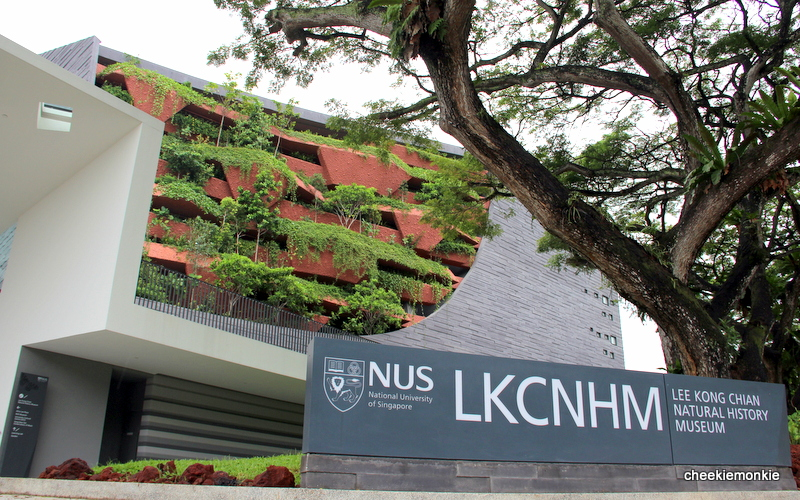 Image result for lee kong chian natural history museum