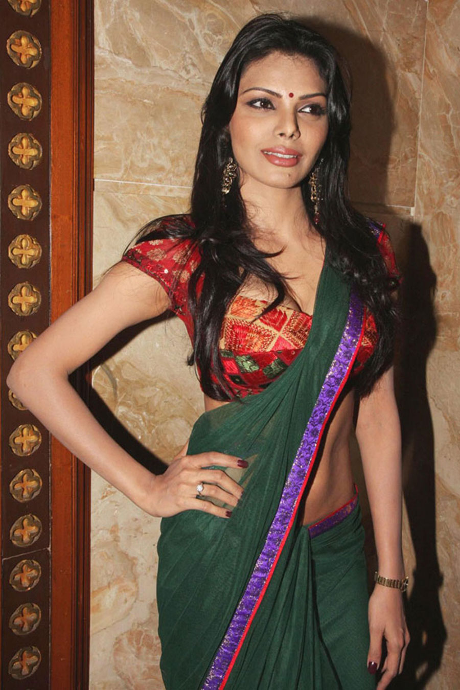 sherlyn chopra in saree hot images