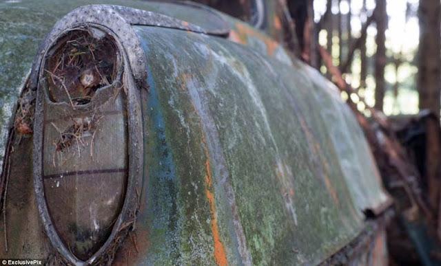 cementerio autos bosque Chatillon Bélgica