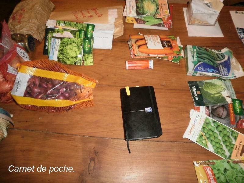 le potager des violettes  le carnet du potager