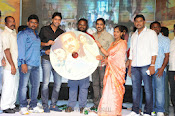 Ninnu Chusi Vennele Anukunna Movie audio launch-thumbnail-13