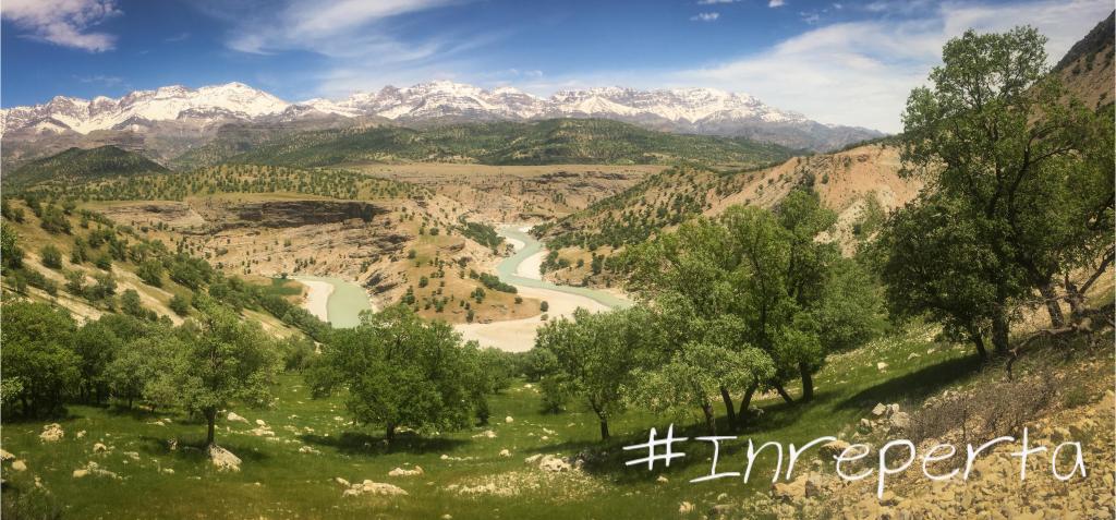 #Inreperta | Petra's Travel Board