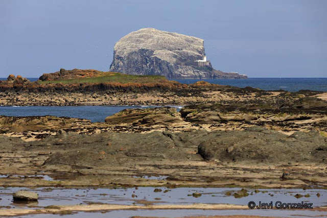 North Berwick, Scotland,