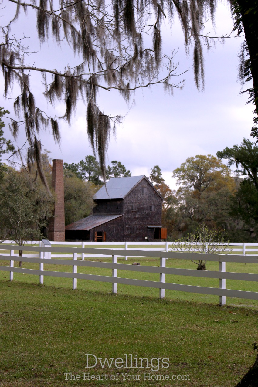 Old barn and live oaks