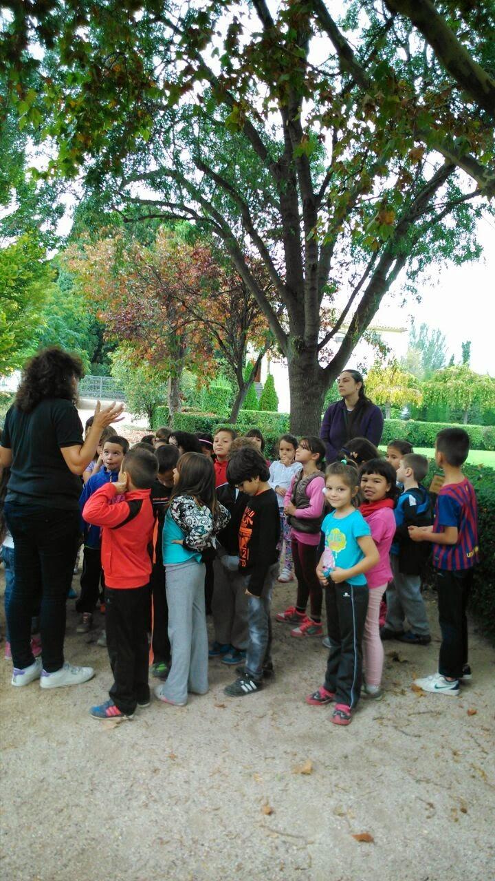 Primer ciclo ceip labordeta visita a la escuela de for Escuela de jardineria