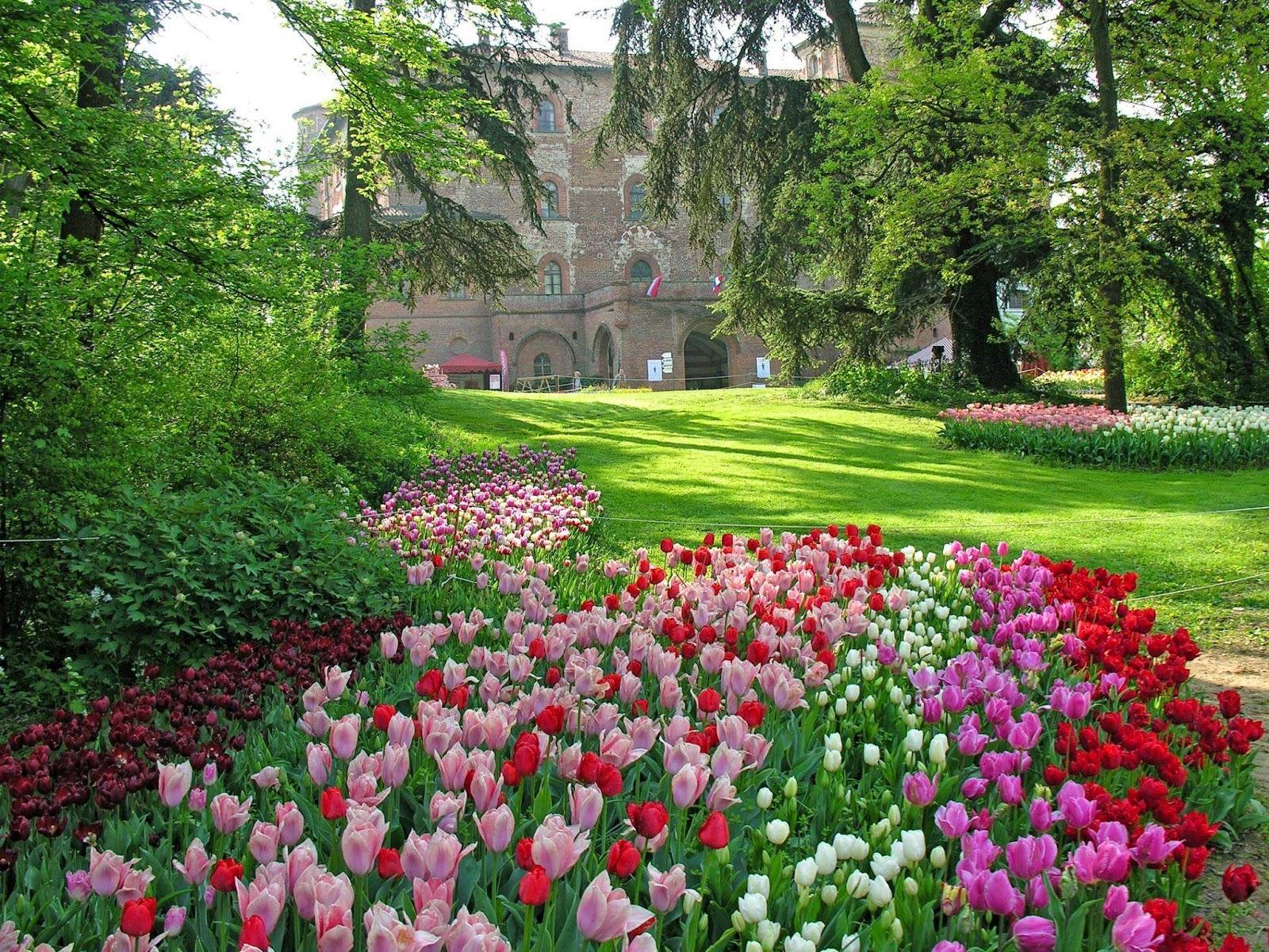 Paesaggi primaverili primavera spring printemps - Giardini particolari ...