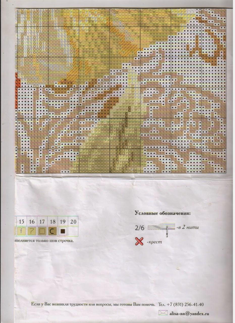 Схема вышивки алиса белые розы 39
