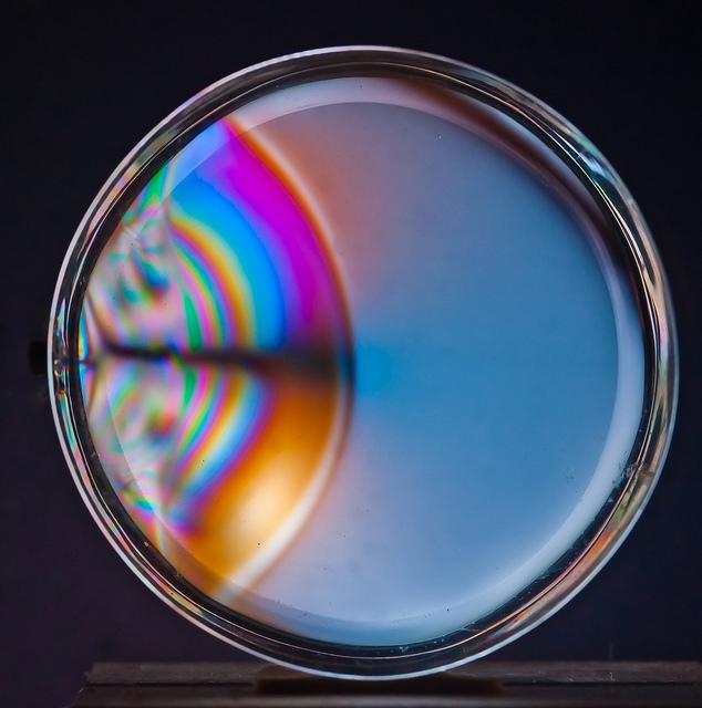 Plexi Disk