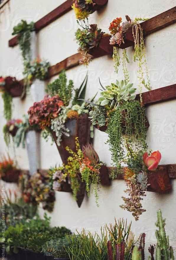 inspiracion pared vegetal diy