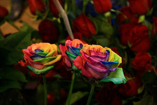 rainbow+rose+1 A Gift of Survival........