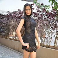 Kritika singhal hot photos at dil deewana movie press meet