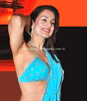 Amisha, patel, hot, cleavage, and, navel
